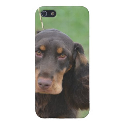 Adorable Cocker Spaniel iPhone 5/5S Covers
