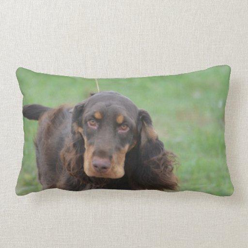 Adorable Cocker Spaniel Pillows
