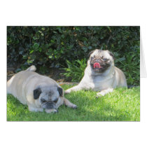Adorable Customizable Pug Photographs Card