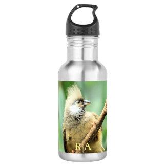 Adorable Cute Brown Mousebird Custom Monogram Stainless Steel Water Bottle