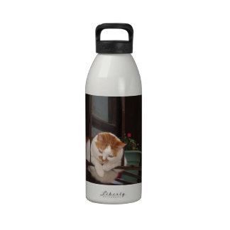 Adorable Cute Chubby Tabby Kitty Cat Picture Drinking Bottles