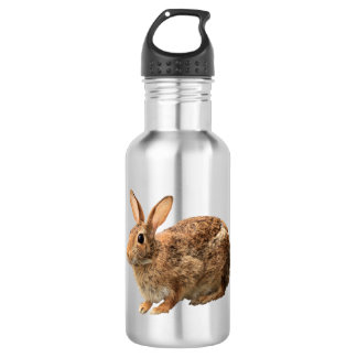 Adorable Cute Cuddly Cottontail Wild Bunny Rabbit Water Bottle