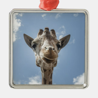 Adorable & Cute Giraffe Head Gift Product Metal Ornament