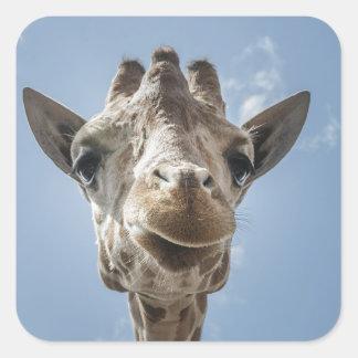 Adorable & Cute Giraffe Head Gift Product Square Sticker