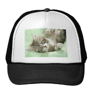 Adorable Cute Grey Tabby Kitten Paw Play Tapping Trucker Hat