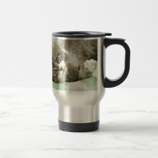 Adorable Cute Grey Tabby Kitten Paw Play Tapping Coffee Mugs