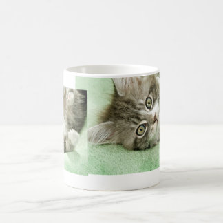 Adorable Cute Grey Tabby Kitten Paw Play Tapping Mug