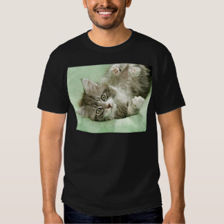 Adorable Cute Grey Tabby Kitten Paw Play Tapping Shirt