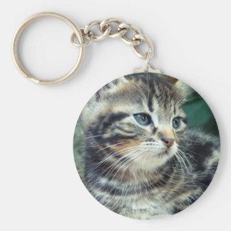 Adorable Cute Kitten Keychain