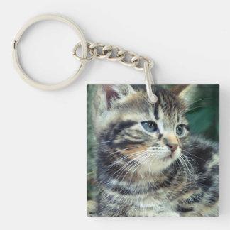 Adorable Cute Kitten Acrylic Keychains