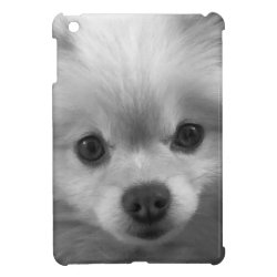 Adorable Cute Pomeranian Puppy Cover For The iPad Mini