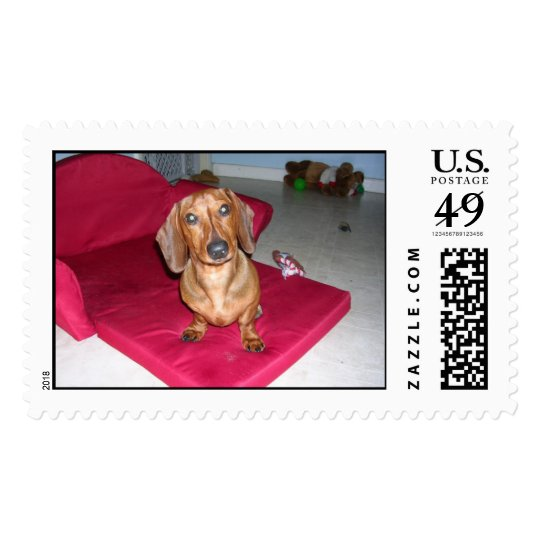 Adorable Dachshund Postage