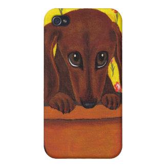 Adorable Dachshund Puppy I Phone Case