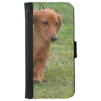 Adorable Dachshund Puppy iPhone 6 Wallet Case