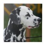 Adorable Dalmatian Ceramic Tile