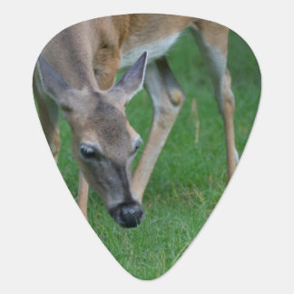 Adorable Deer Guitar Pick