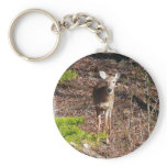 Adorable Deer in the Woods Nature Photography Keychain