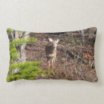 Adorable Deer in the Woods Nature Photography Lumbar Pillow