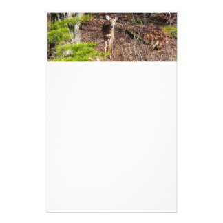 Adorable Deer in the Woods Stationery