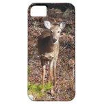 Adorable Deer Iphone 5 Case-mate Case