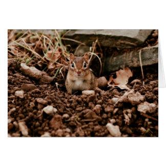 Adorable Digger Chipmunk Card