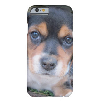Adorable Dirty Nose Beagle Pup Barely There iPhone 6 Case