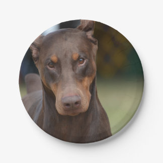 Adorable Doberman Pinscher 7 Inch Paper Plate