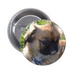 Adorable Doggie Button