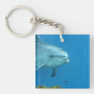 Adorable Dolphin Single-Sided Square Acrylic Keychain