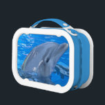 """Adorable Dolphin Lunch Box<br><div class=""""desc"""">Cute Bottlenose dolphin with an adorable expression.</div>"""