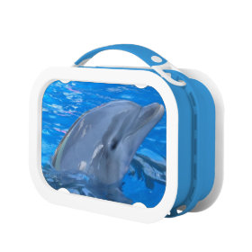Adorable Dolphin Yubo Lunch Box