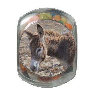 Adorable Donkey Glass Candy Jars