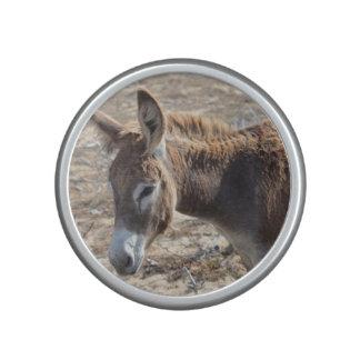 Adorable Donkey Speaker