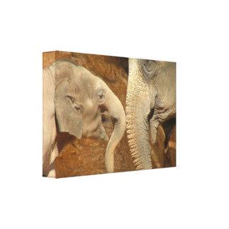 ADORABLE ELEPHANTS STRETCHED CANVAS PRINTS