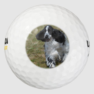 Adorable English Cocker Spaniel Golf Balls