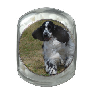 Adorable English Cocker Spaniel Jelly Belly Candy Jars