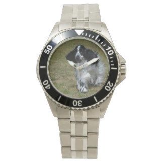 Adorable English Cocker Spaniel Wristwatch