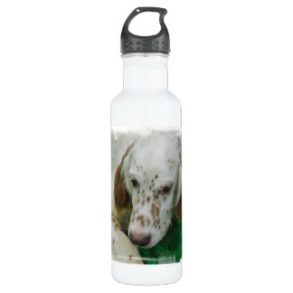 Adorable English Setter 24oz Water Bottle