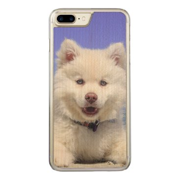 Adorable Finnish Lapphund at the beach Carved iPhone 8 Plus/7 Plus Case