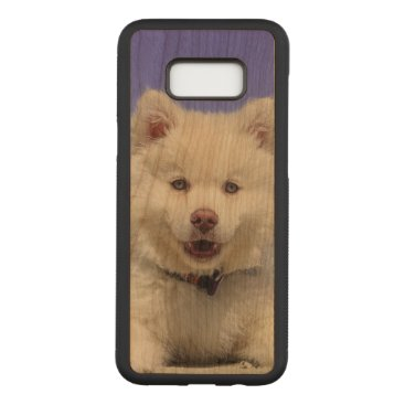 Adorable Finnish Lapphund at the beach Carved Samsung Galaxy S8  Case