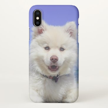 Adorable Finnish Lapphund at the beach iPhone X Case