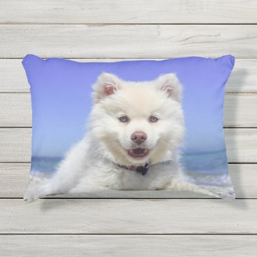 Beach Themed Adorable Finnish Lapphund at the beach Outdoor Pillow
