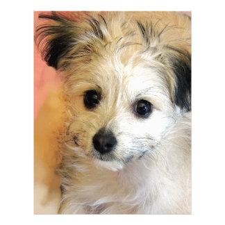 Adorable Floppy Ear Rescue Puppy Letterhead