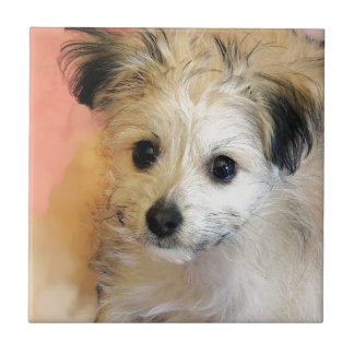 Adorable Floppy Ear Rescue Puppy Small Square Tile