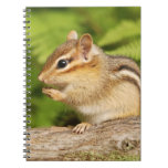 Adorable Fluffy Baby Chipmunk Note Book