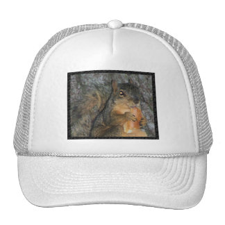 Adorable Fox Squirrel in a Tree Eating a Roll Mesh Hats