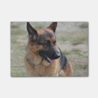 Adorable German Shepherd Post-it® Notes