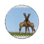 Adorable Giraffes Jelly Belly Candy Tin