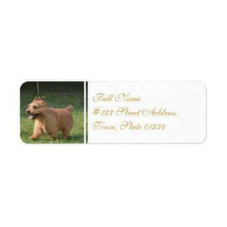 Adorable Glen of Imaal Terrier Return Address Labels
