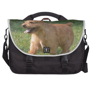 Adorable Glen of Imaal Terrier Bags For Laptop